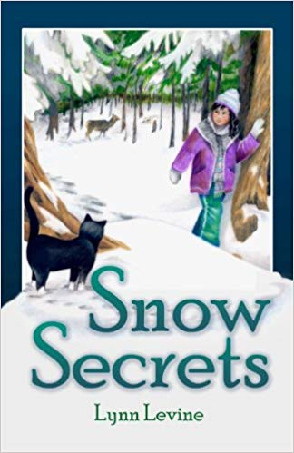Snow Secrets book cover.
