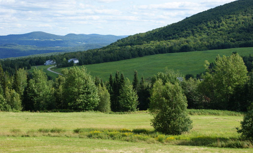 Green hills and trees in Vermont