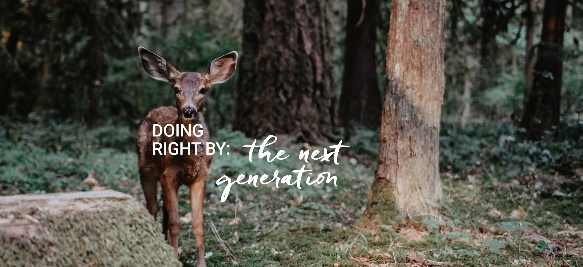 Doing Right By: the next generation Homepage slide