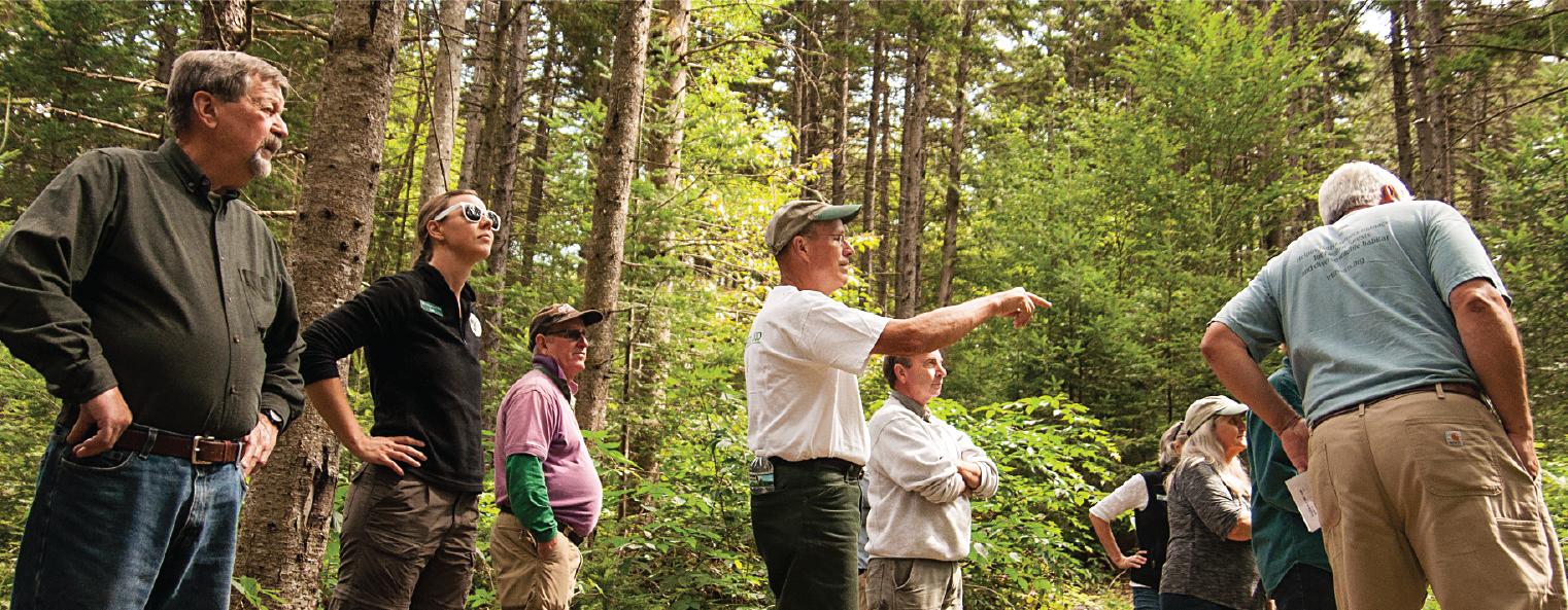 Vermont Woodlands Resources - Vermont Woodlands Association