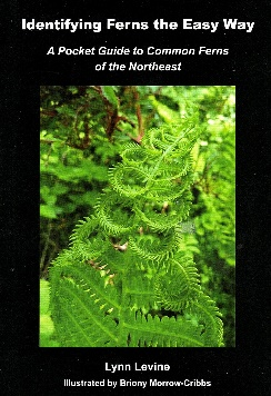 Book cover: Identifying Ferns the Easy Way, a pocket guide to common ferns of the Northeast by Lynn Levine