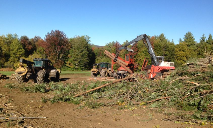 Harvesting equipment on an active logging job