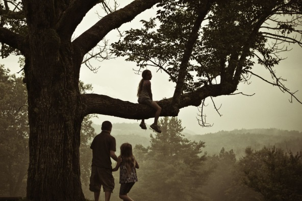 What will become of your land in the future? Will your grandkids still be able to enjoy climbing this tree?